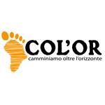 COLOR (2)