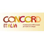 concord_italia_banner